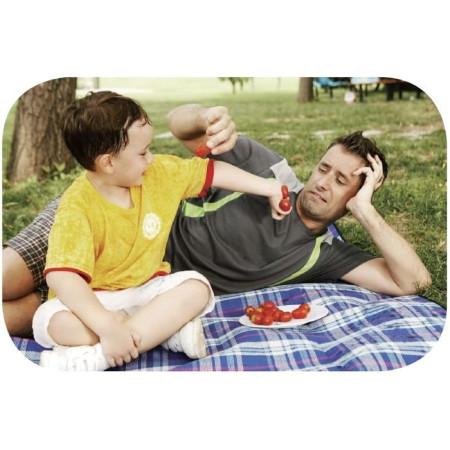 Коврик для пикника KingCamp Picnik Blanket (KG8001) (red)