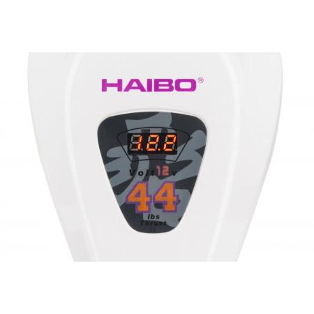 Лодочный  электромотор Haibo D44 соленая вода